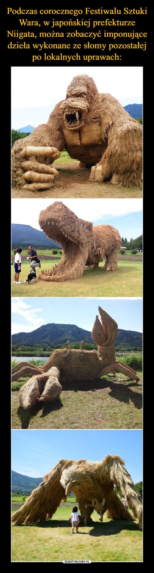 Podczas corocznego Festiwalu Sztuki Wara, w japońskiej prefekturze Niigata, można zobaczyć imponujące dzieła wykonane ze słomy pozostałej po lokalnych uprawach: