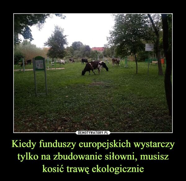 Kiedy funduszy europejskich wystarczy tylko na zbudowanie siłowni, musisz kosić trawę ekologicznie –