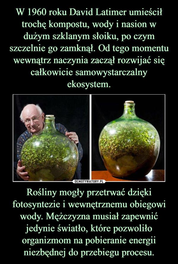 Rośliny mogły przetrwać dzięki fotosyntezie i wewnętrznemu obiegowi wody. Mężczyzna musiał zapewnić jedynie światło, które pozwoliło organizmom na pobieranie energii niezbędnej do przebiegu procesu. –